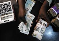 外媒:非洲的美元快用完了 非洲大陆货币崩溃潮将至