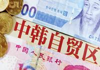 """中韩贸易走向""""零关税时代"""""""