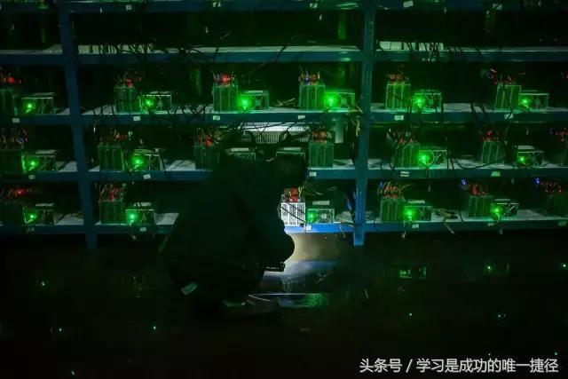 镜头下的中国比特币产业,550台机器全天运行,每天能挖到2.5个比特币